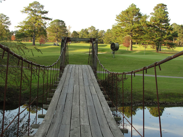 #18 swinging bridge