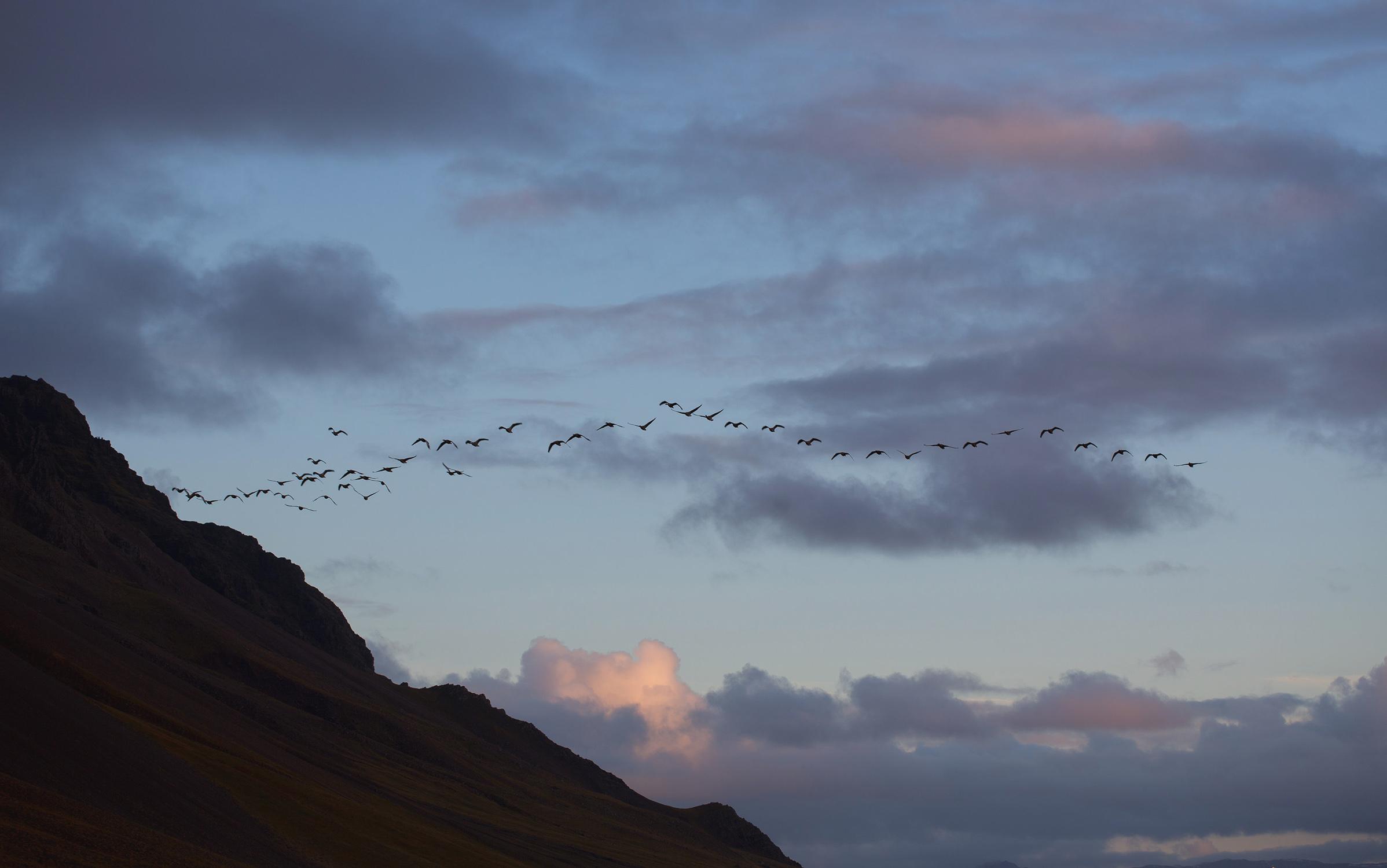 Icelandblog-4.jpg