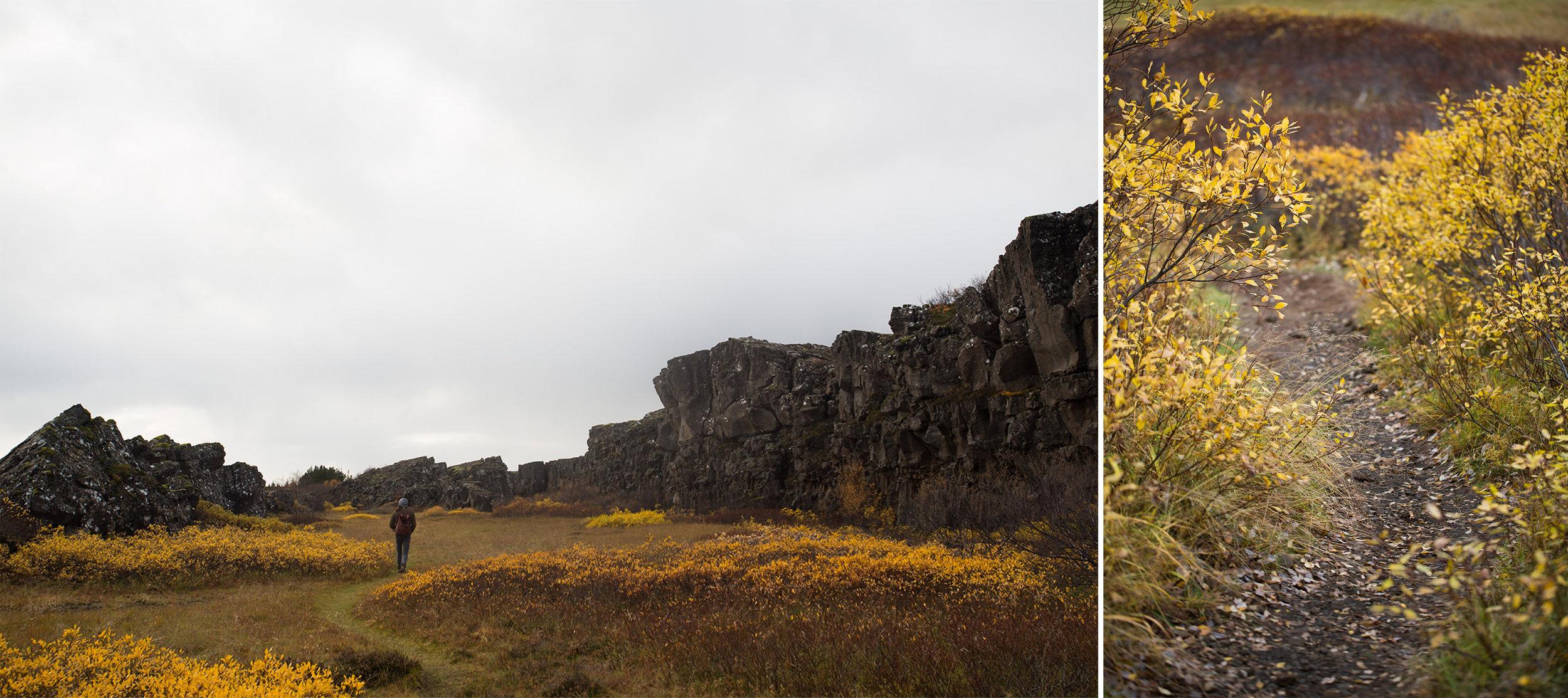 Icelandblog-17.jpg