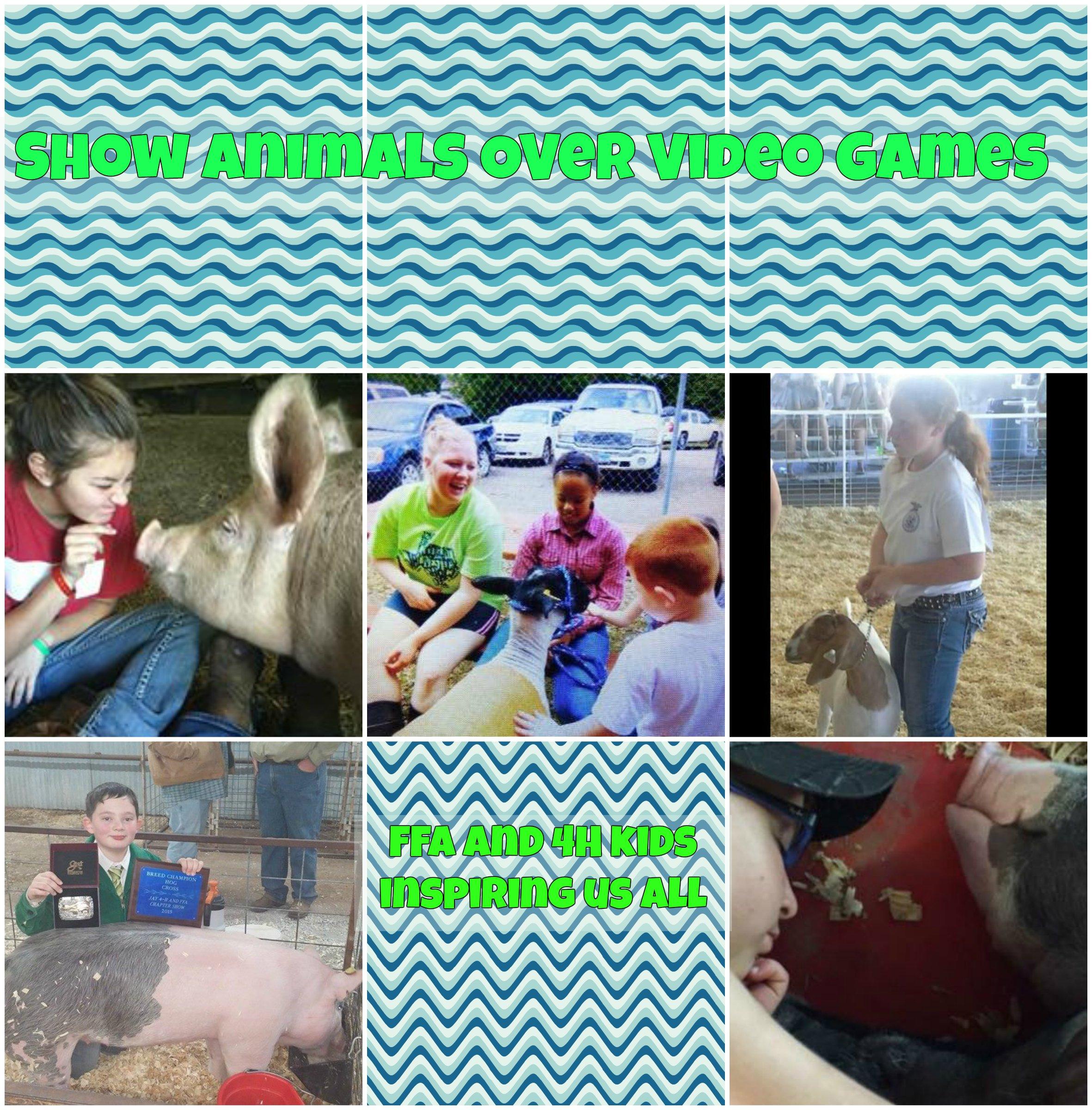 show-animals.jpg