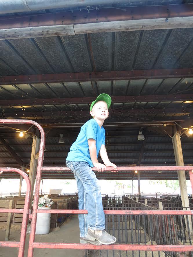 goat-barn