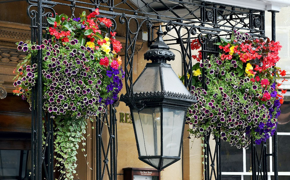 hanging basket containers