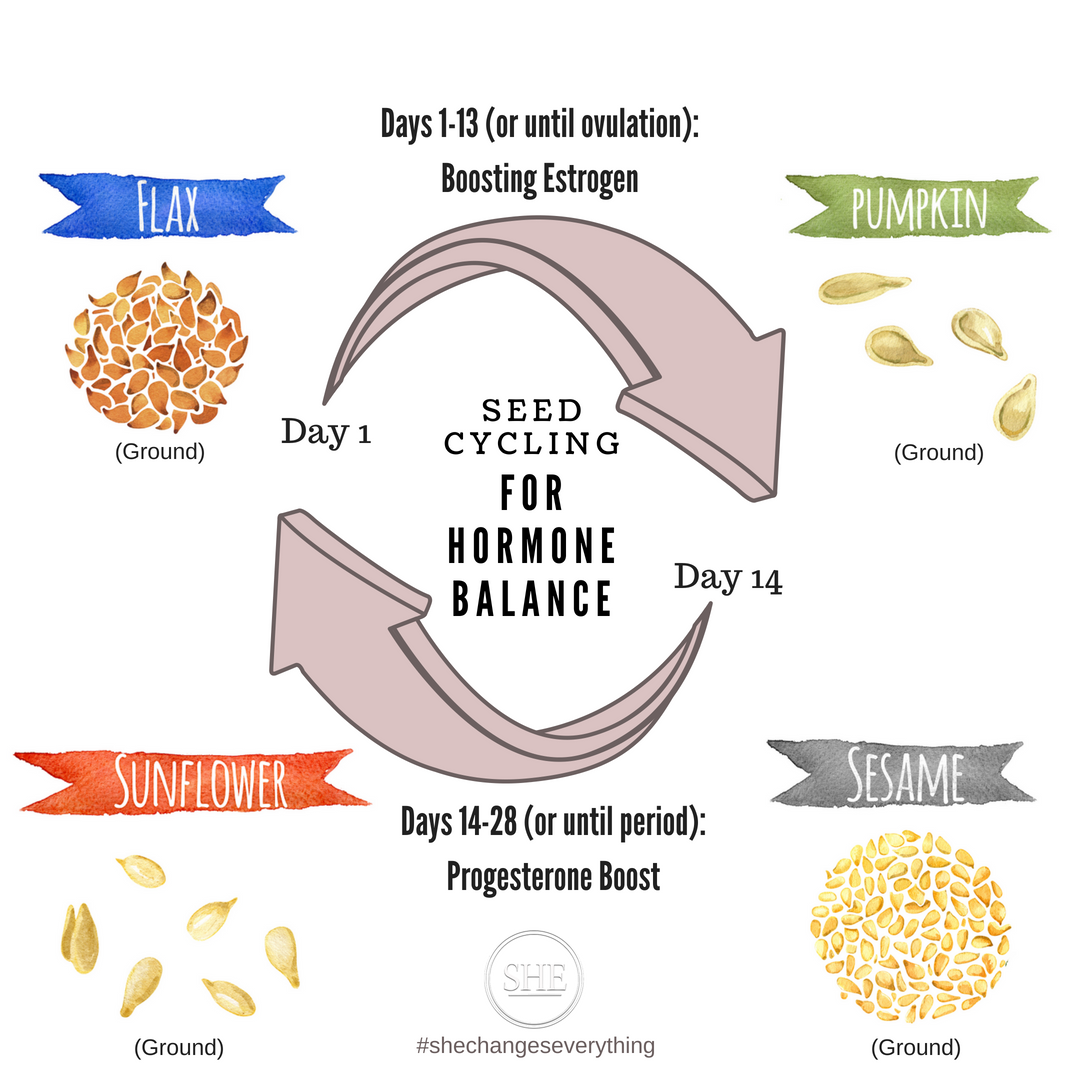 seed cycling infographic.png