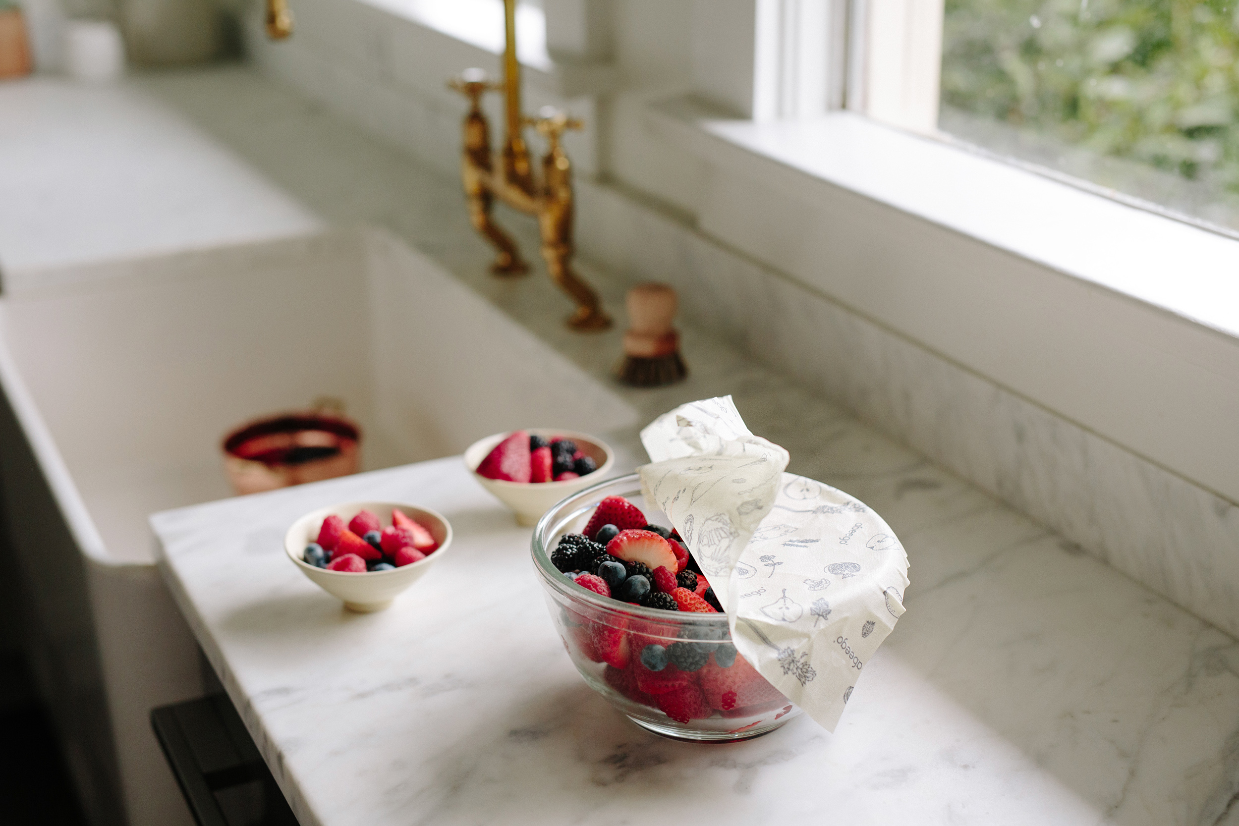 Store fruits, vegetables, cheese, herbs, bread, and cover bowls with Abeego.