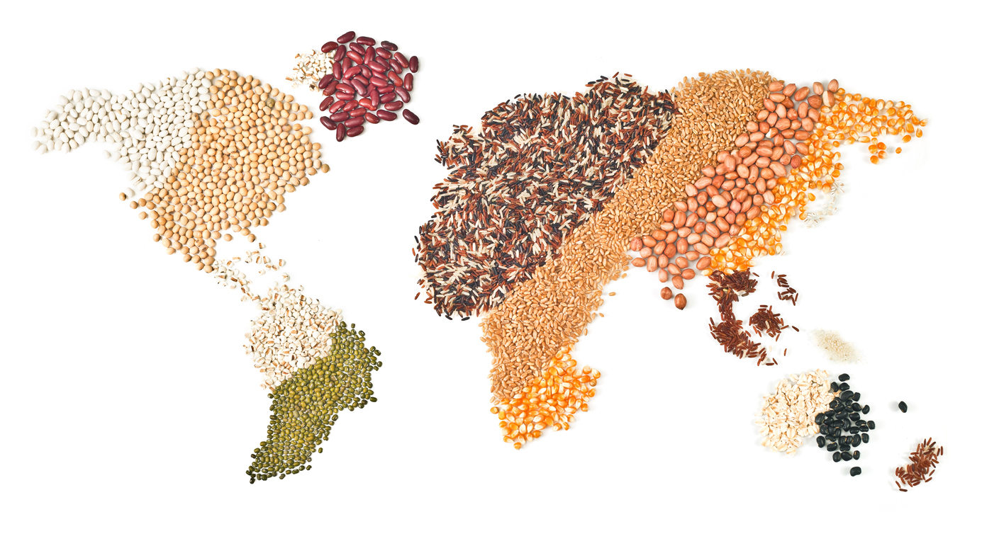 different grains shaped into a map of the world
