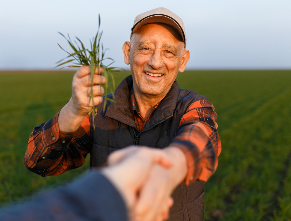 elderly farmer holding winter wheat while shaking a hand