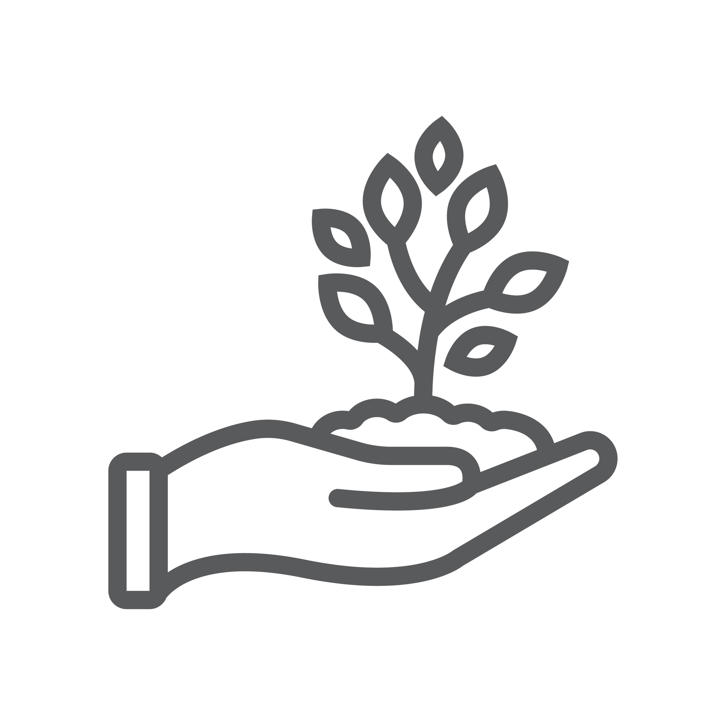 hands holding plant in soil graphic