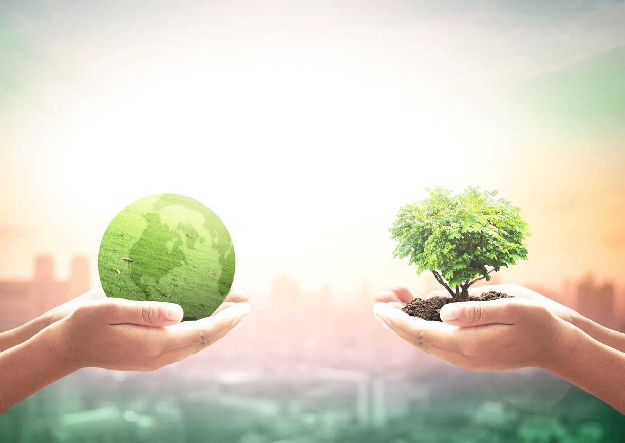 two hands holding green globe and growing tree