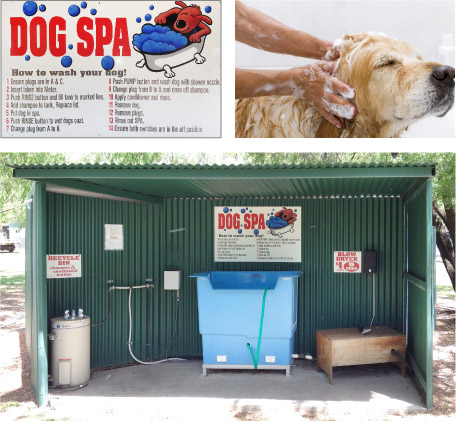 DIY Dog Spa right on site!