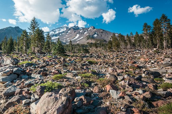 view-of-mt-shasta-from.jpg