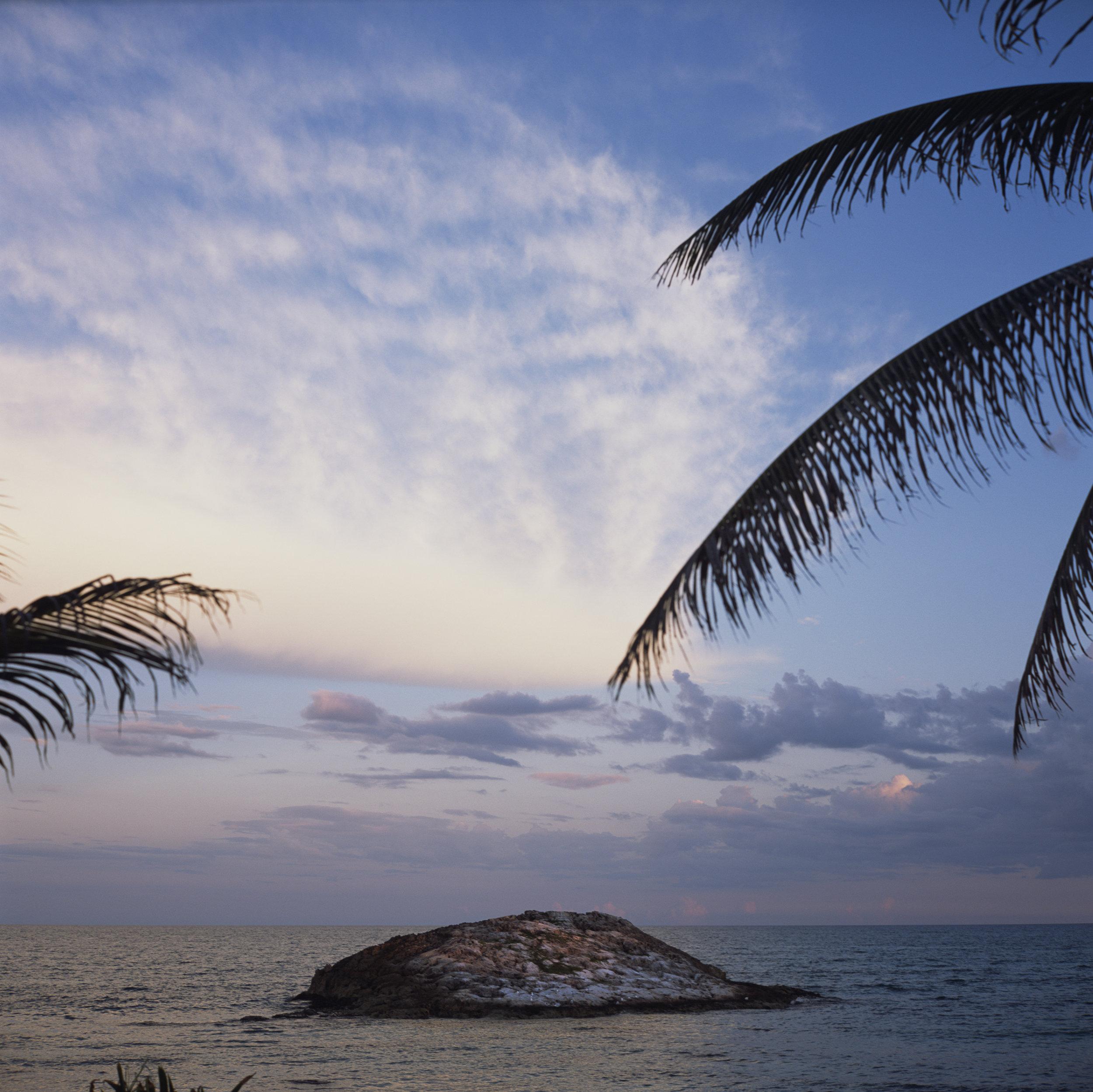 Palm Isle, 2018