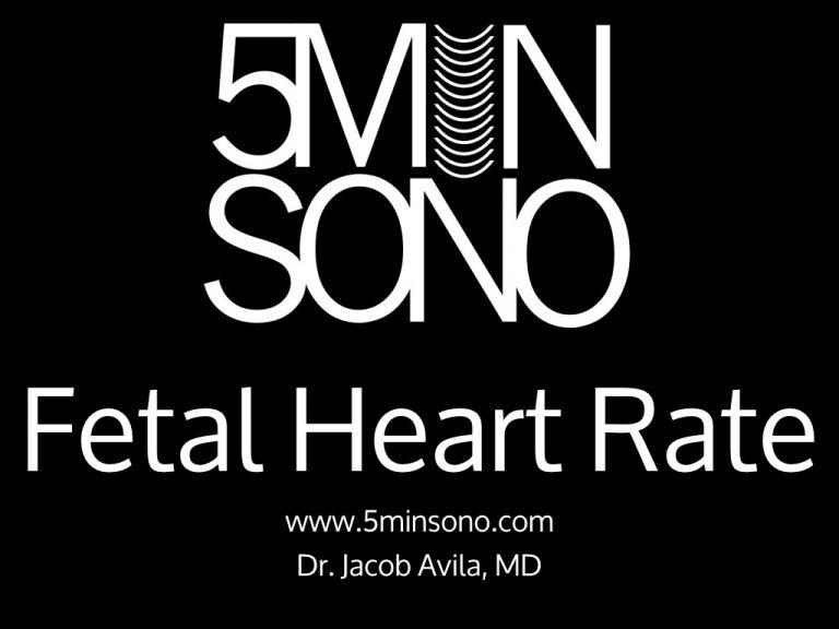 5-Min-Sono-Fetal-Heart-Tones.001-768x576.jpg