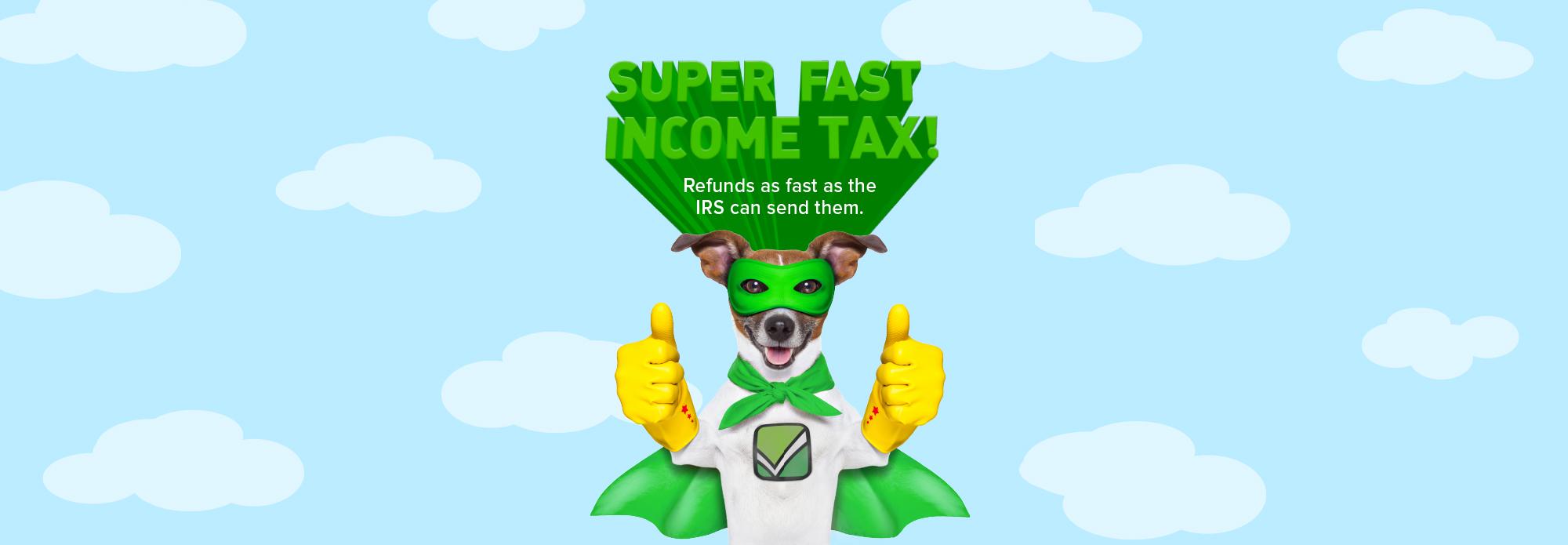 Puma_Accounting_Professional_Income_Tax-header-Super_Fast_Hero.jpg