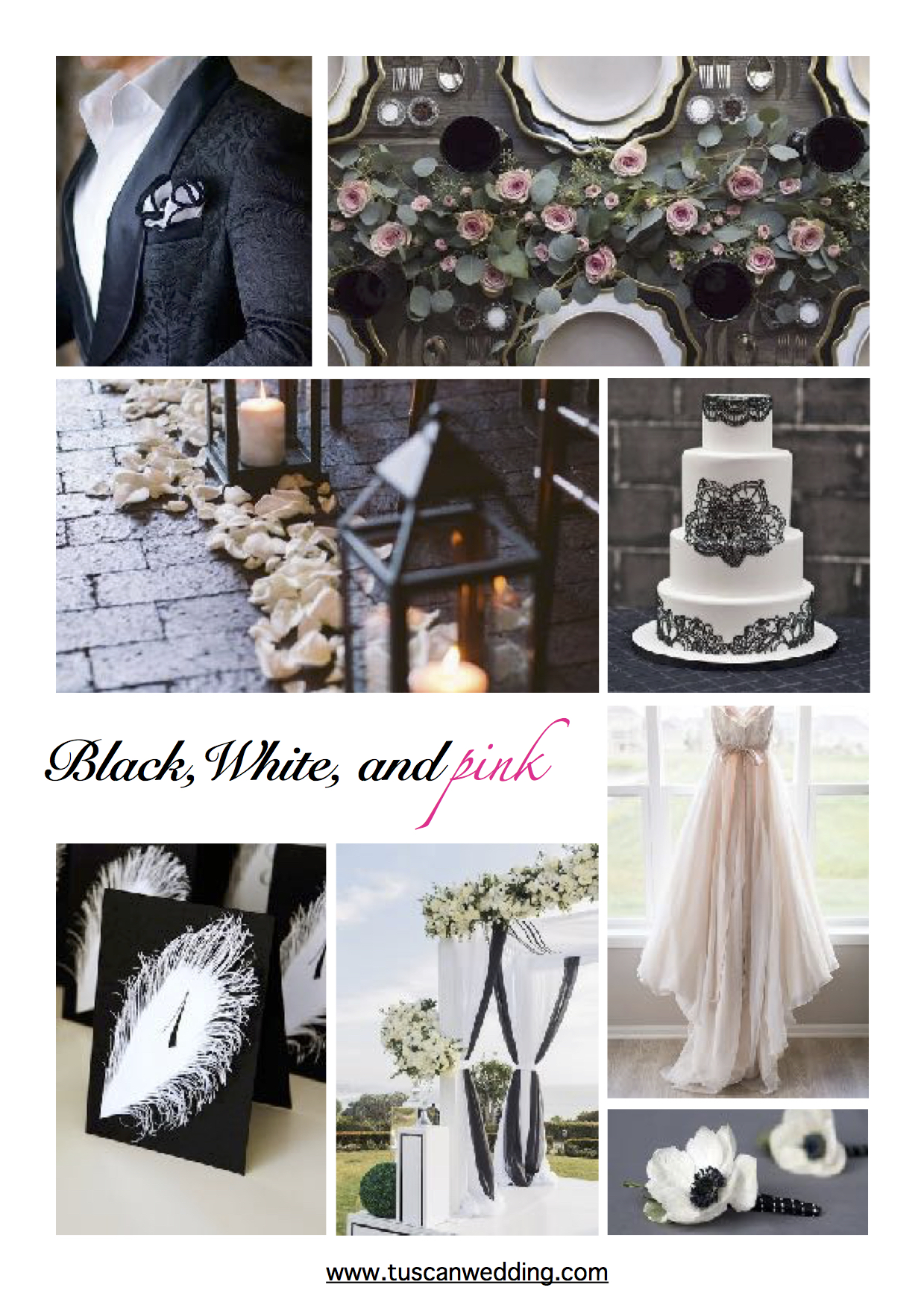 Black and white and pink.jpg