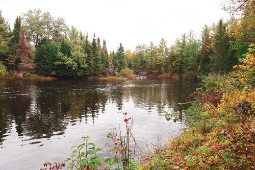 Au Sable Riverview Resort Grayling Michigan The Cotage at the river 4.jpg