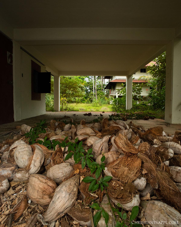 Coconut husks under an army barracks, Panama