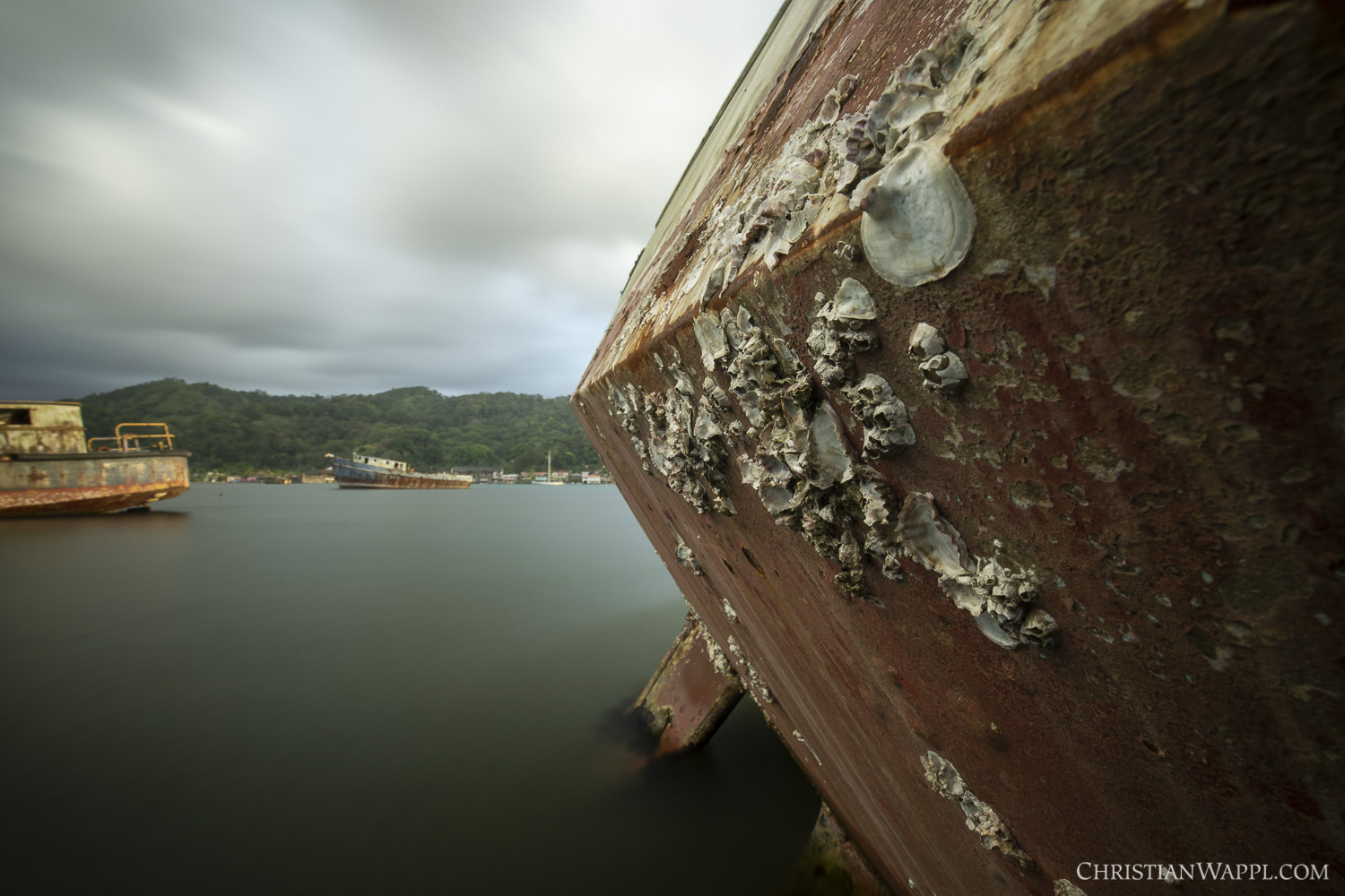 Remains of barnacles on the wreck of the SY  Loonsong , Panama