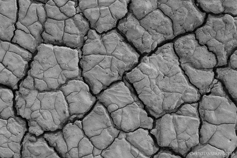 Cracks in the mud