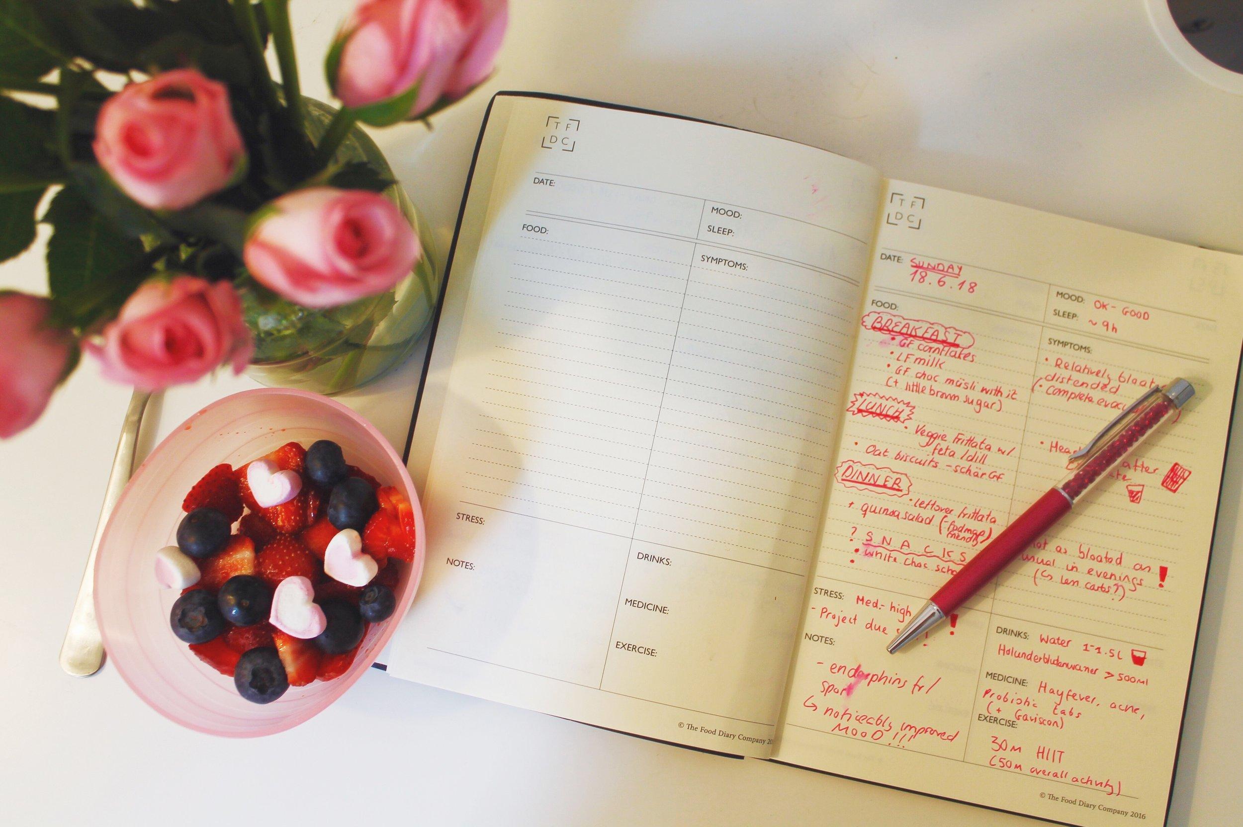 student-IBS-diary.JPG