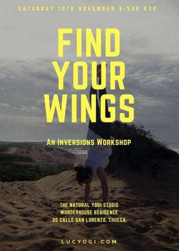 Find your wings 1.jpg