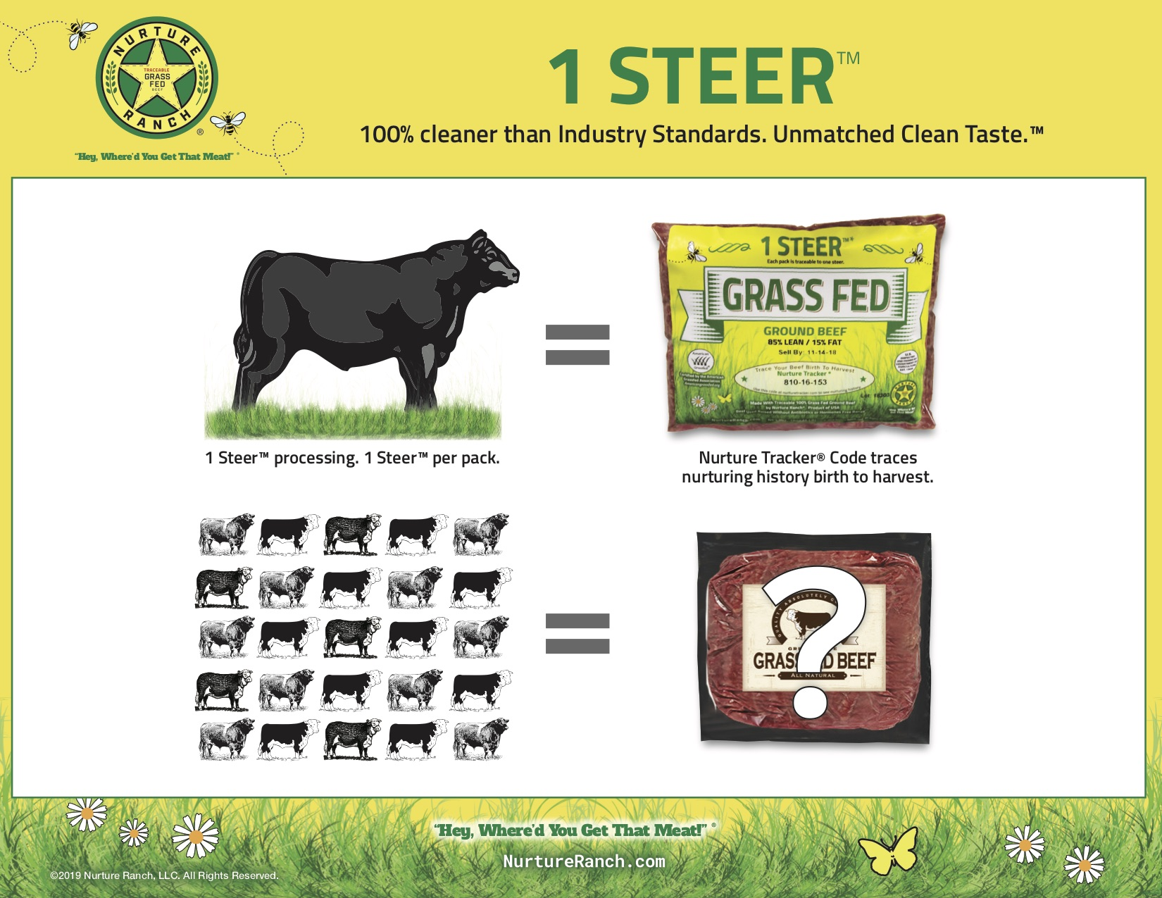 1 Steer per pack JPEG.jpg