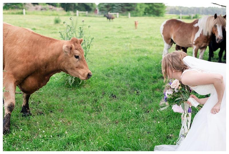 Wisconsin_farm_wedding_0029.jpg