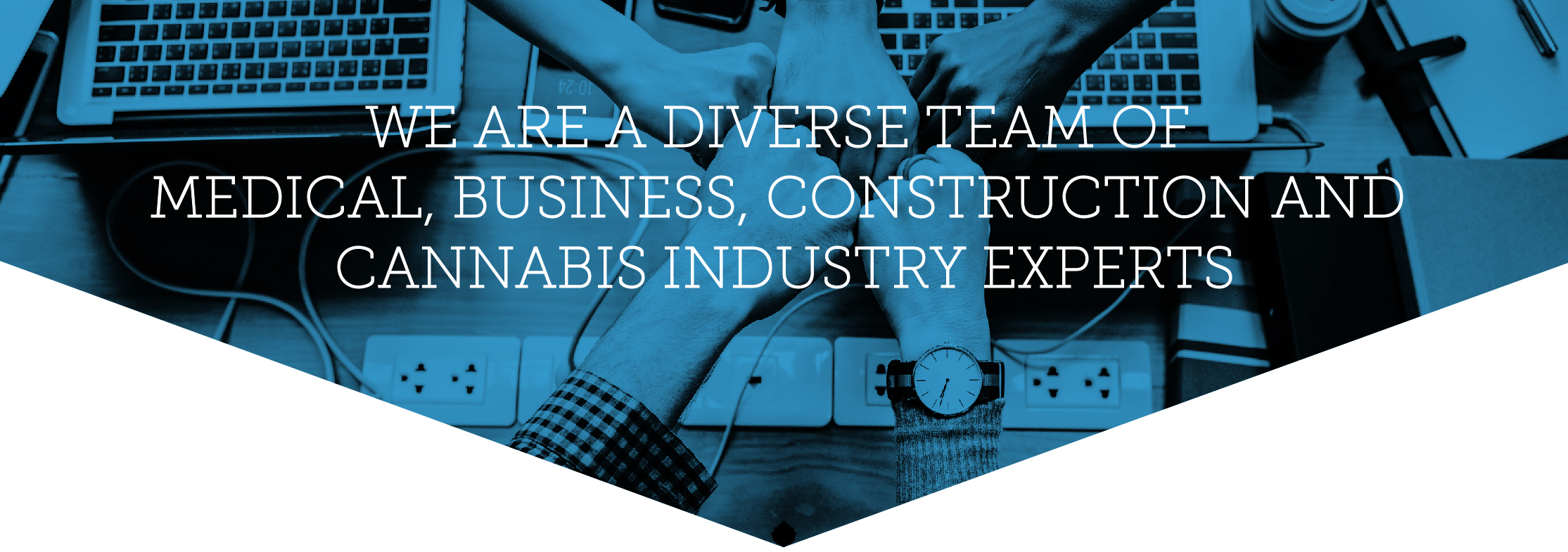 We are a diverse team of Medical, Business, Construction and Cannabis Industry Experts