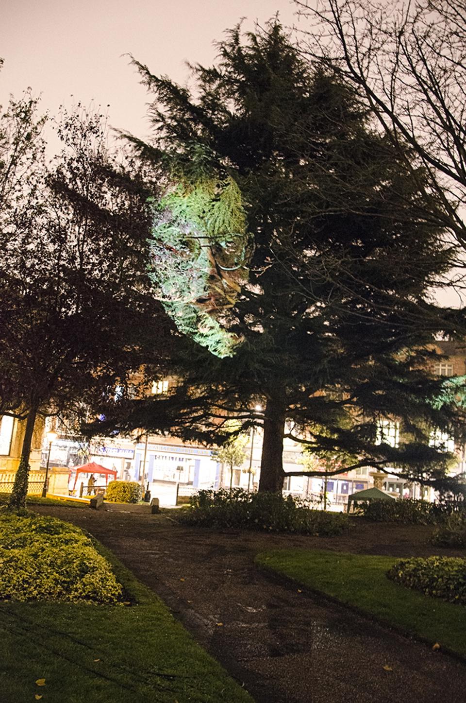 IM_WolverhamptonEng2014_Tree1_big.jpg