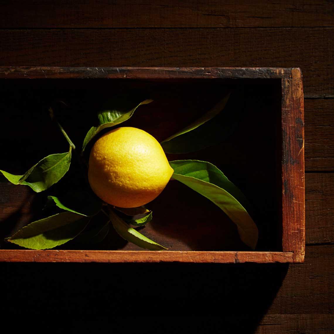 Jane Hartmann  Tabletop / Still Life