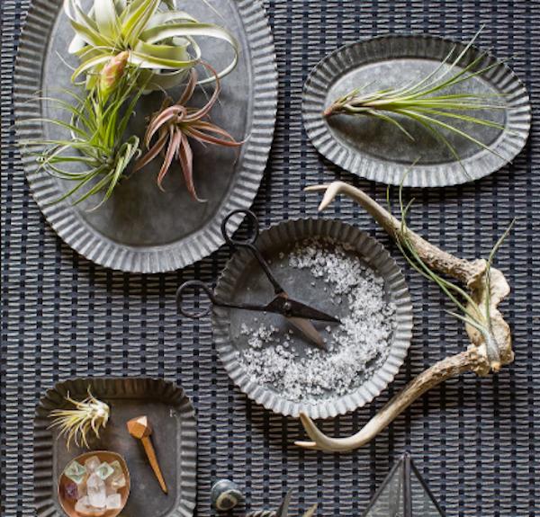 Ana Monfort  Tabletop / Still Life
