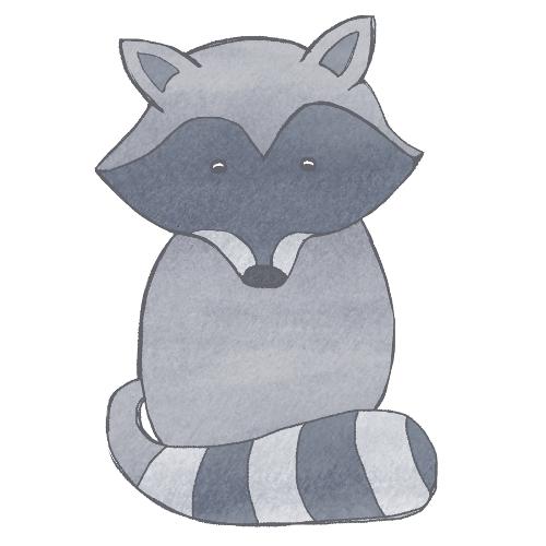 shy racoon