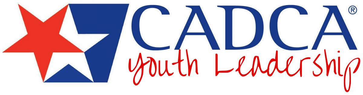National Youth Leadership Initiative Logo