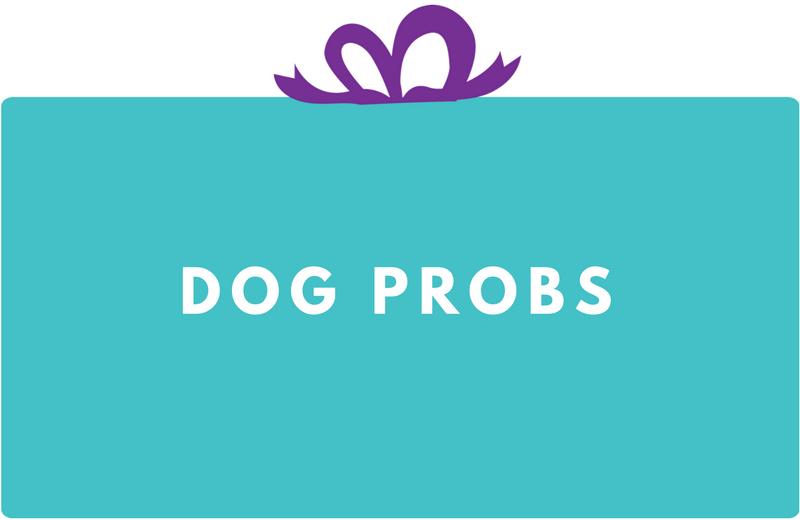 Surprise Gift Co. Blog : Dog Probs