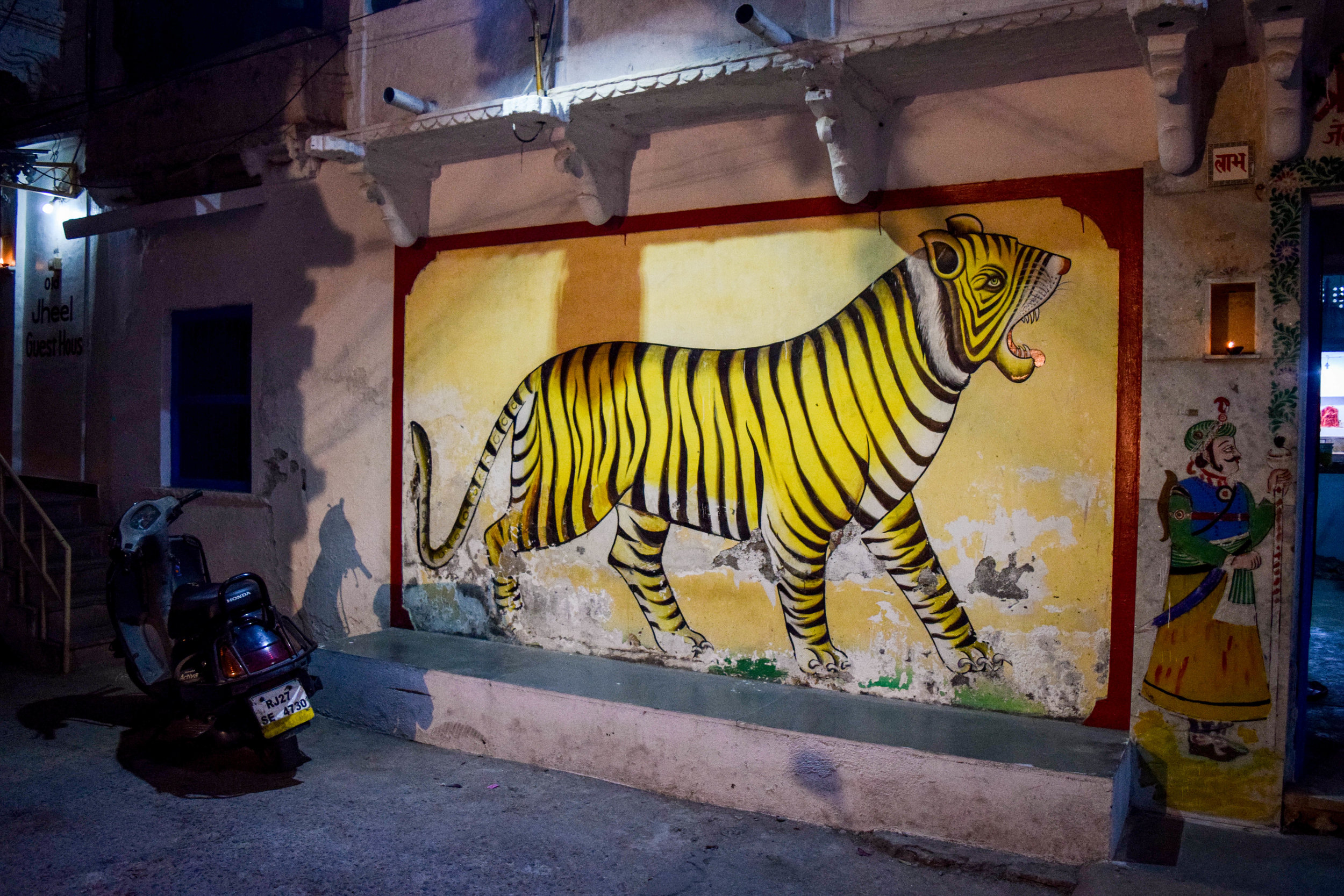 Rajasthan is full of gorgeous wall art like this.