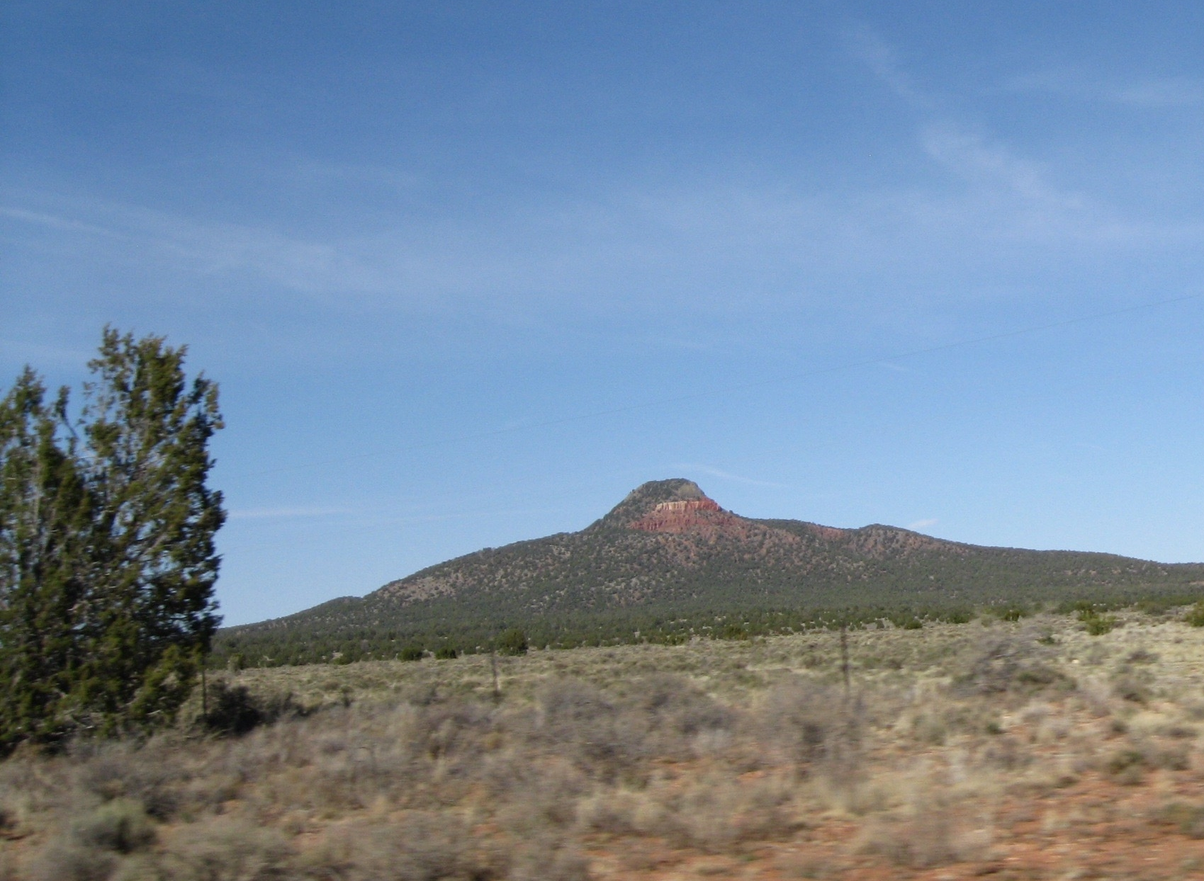 Picture from Sipra's trip to the Southwest in the spring.
