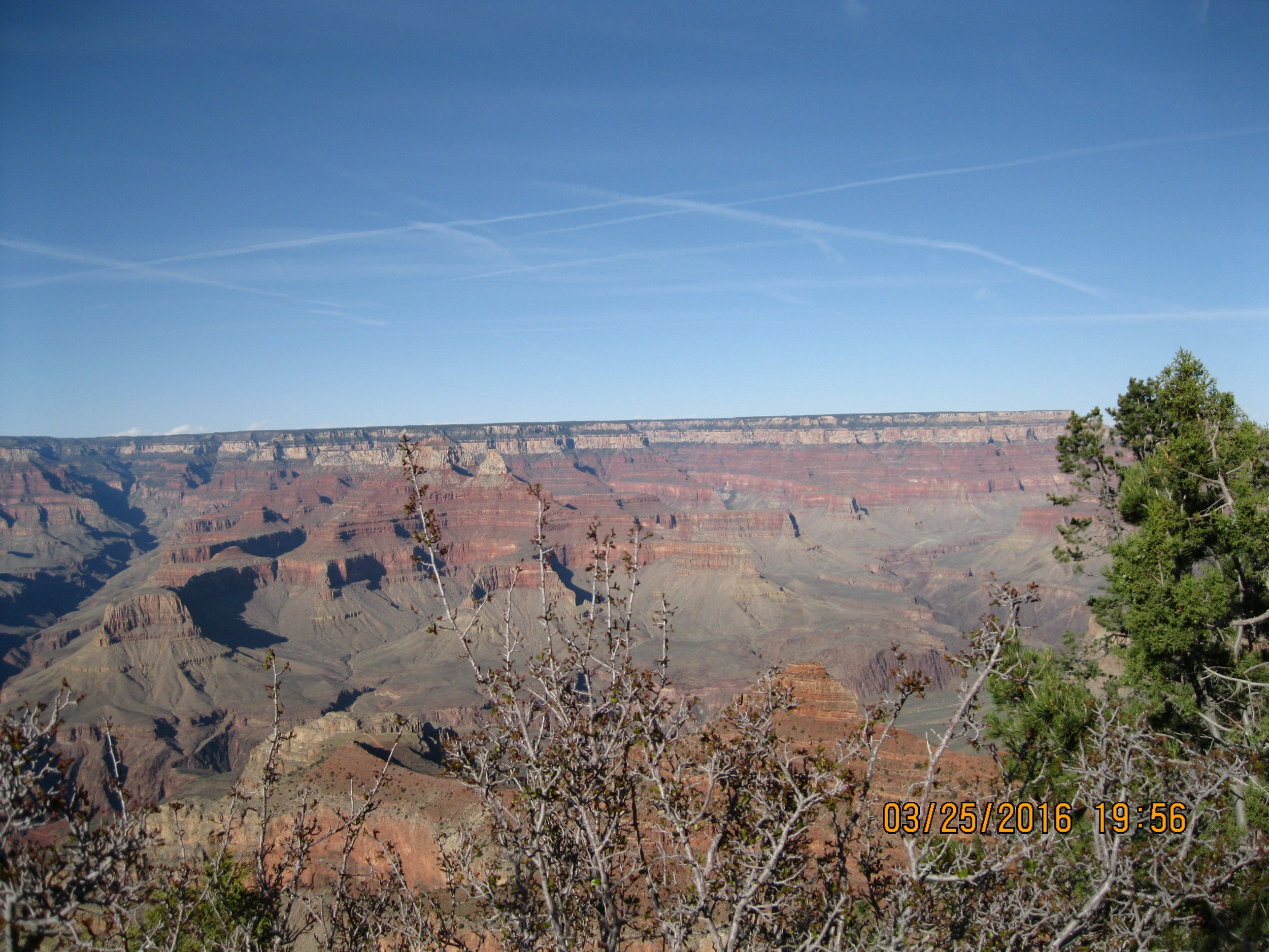 Picture of the Grand Canyon from sipra's trip this spring.