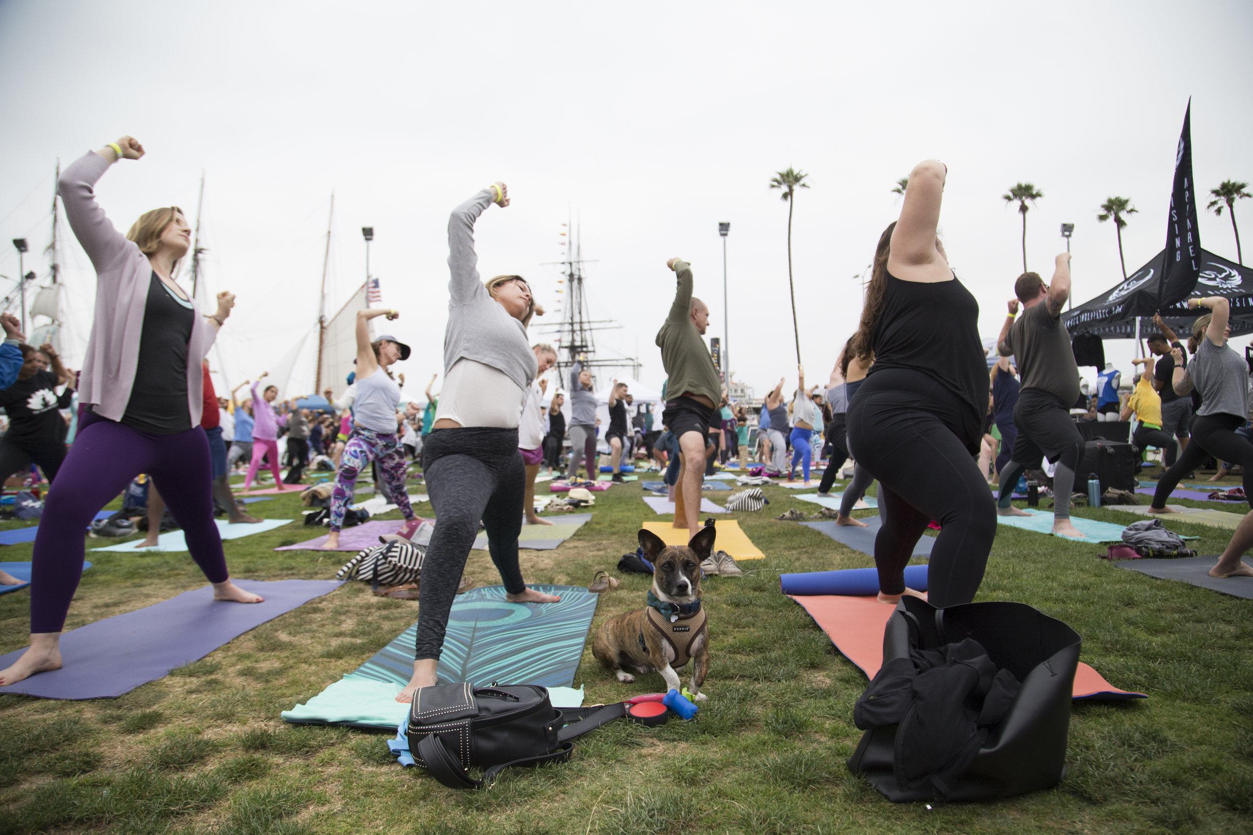 Festival of Yoga 2019_022.jpg