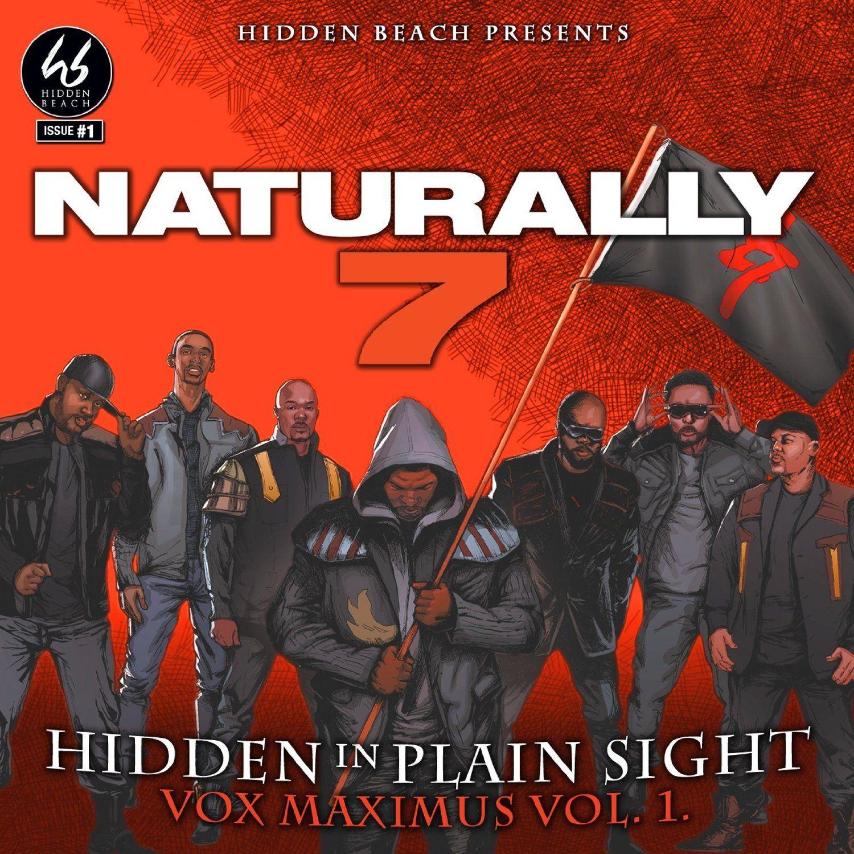 Hidden In Plain Sight.jpg
