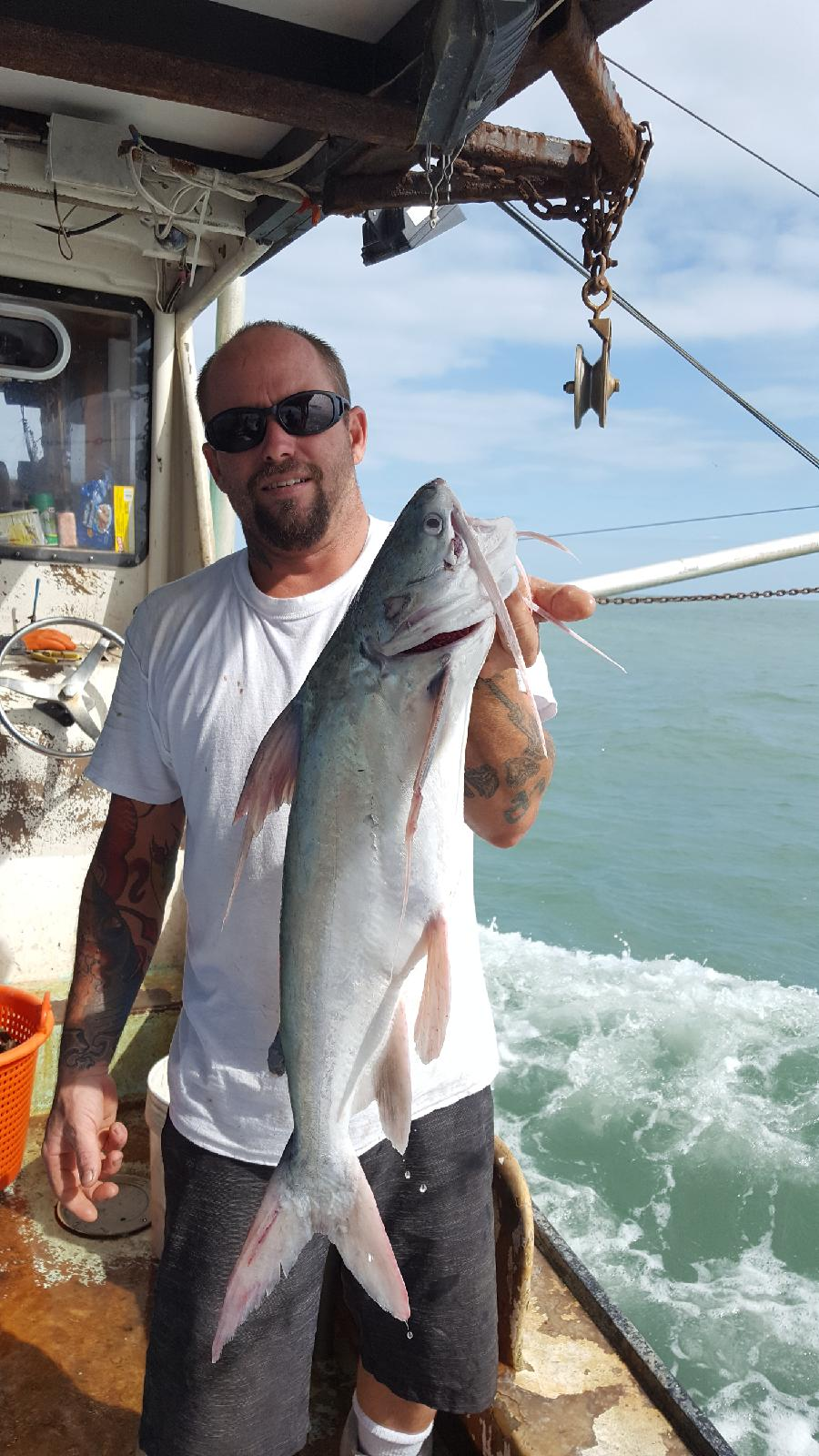 The saltwater catfish served by Smithtown Seafood is caught wild from the Atlantic Ocean by folks like Captain Richie, above, in the Daytona Beach-Ponce Inlet area of Florida. Kelly said that saltwater catfish is one of the few species biting offshore right now,after the hurricanes stirred up the ocean.