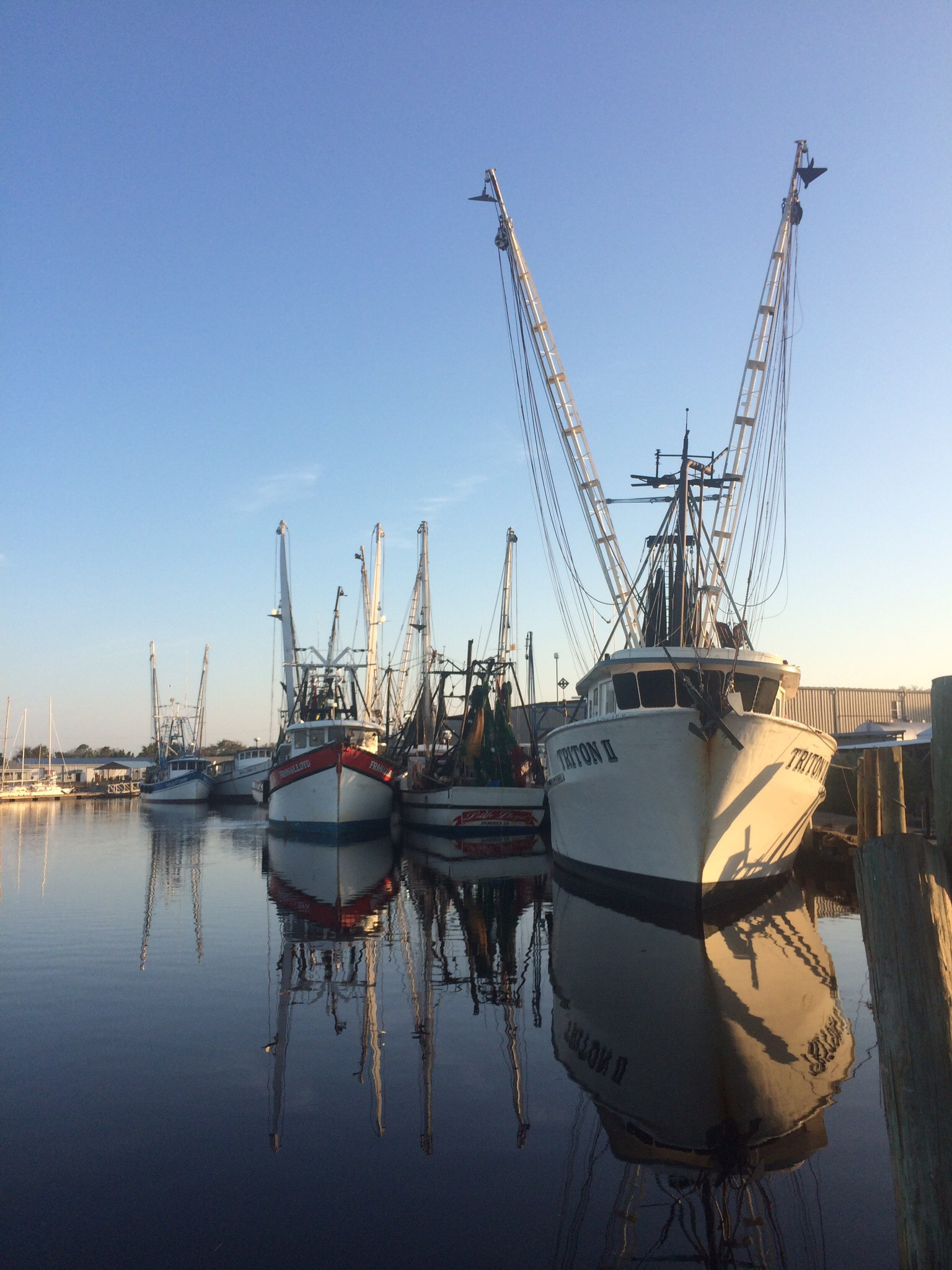 Calm after the storm:Shrimp boats at St. Augustine looked great, but were still moored this week.