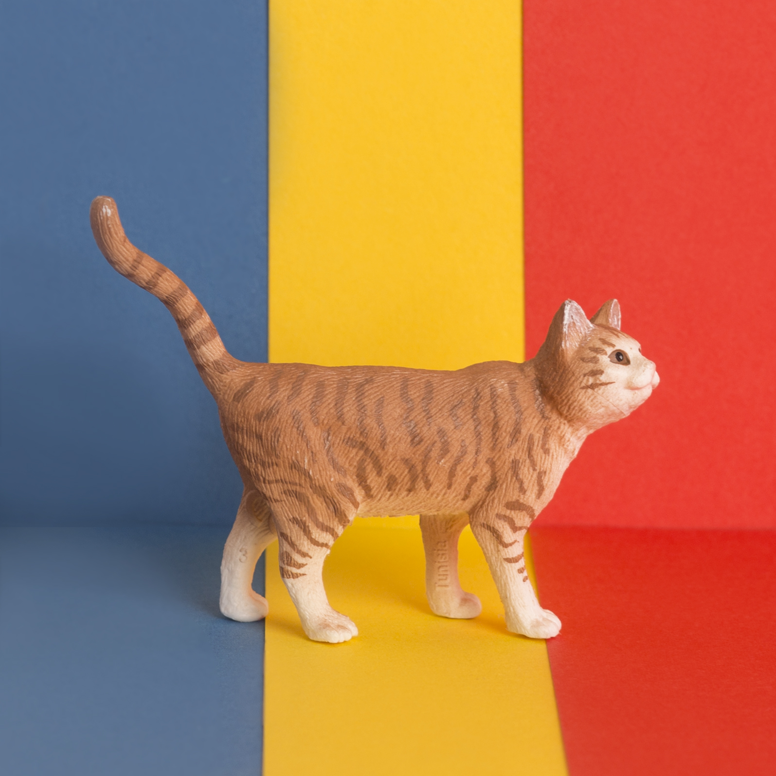 August 8th - International Cat Day