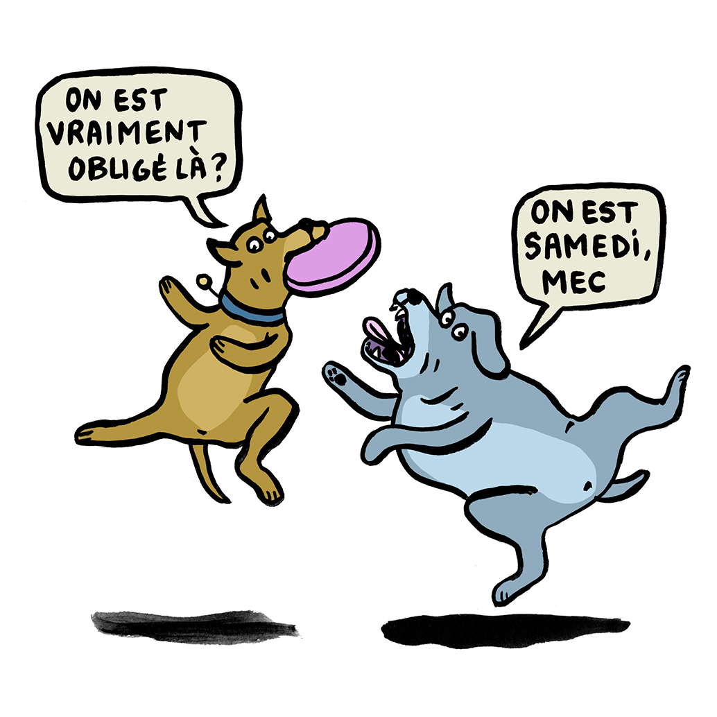 SAMEDI-DOGS.jpg