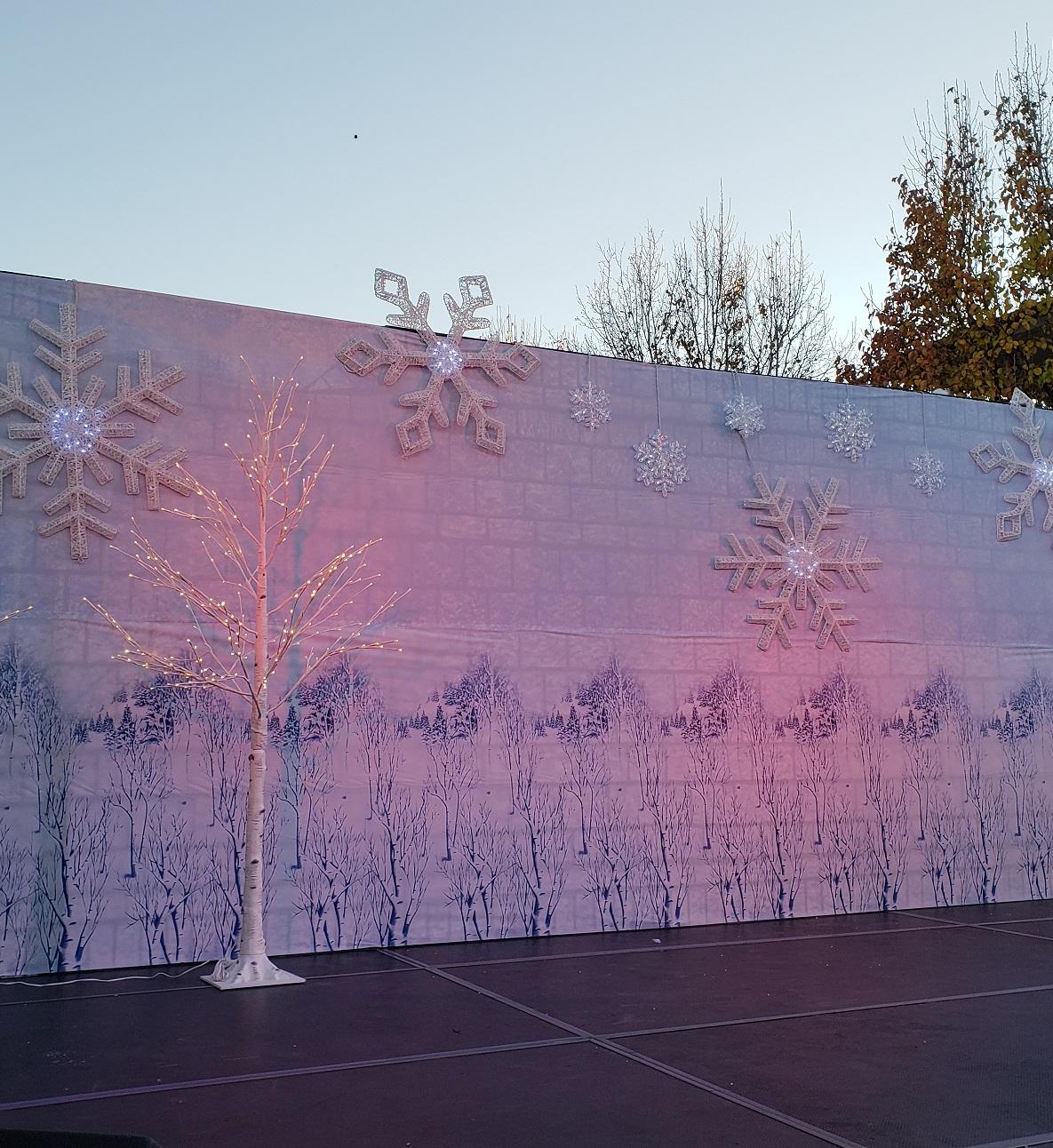 Photo Backdrop (Holiday)