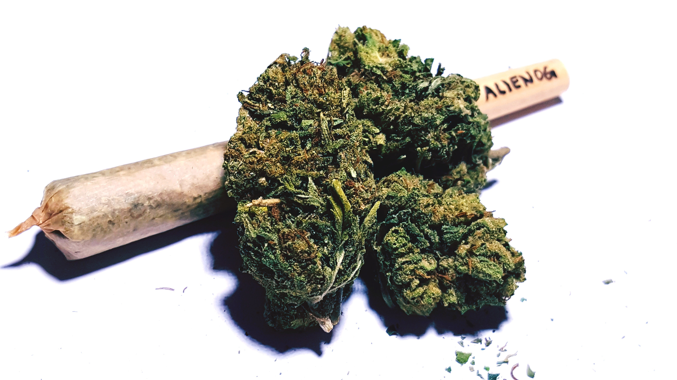 2019_0320-joint-with-buds.jpg