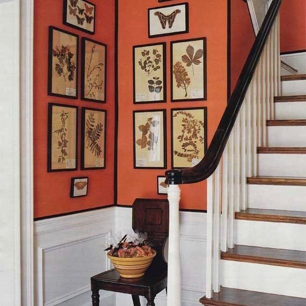 Proof that adding orange can both energize and elevate a space. Design: Suzanne McGrath #orange #colors_of_day #entryway #interior_design