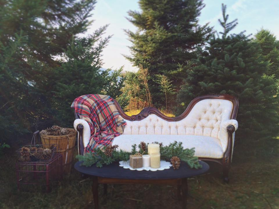 A Moment Captured, by Brittany  Item Used: Caroline Sofa  *Other items not ours