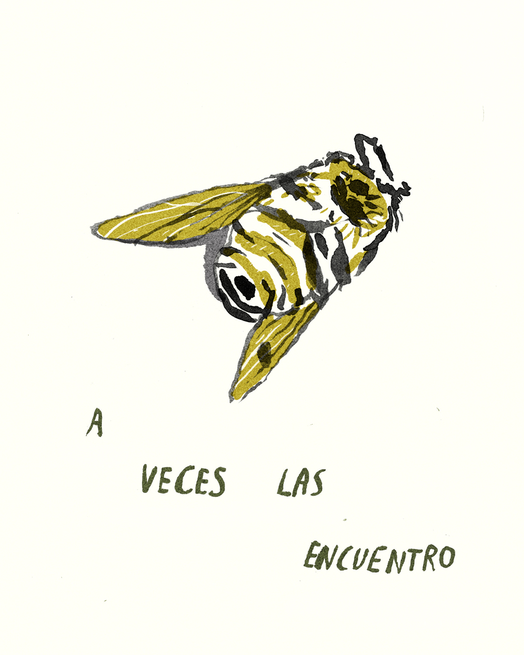para las abejas 1.jpg