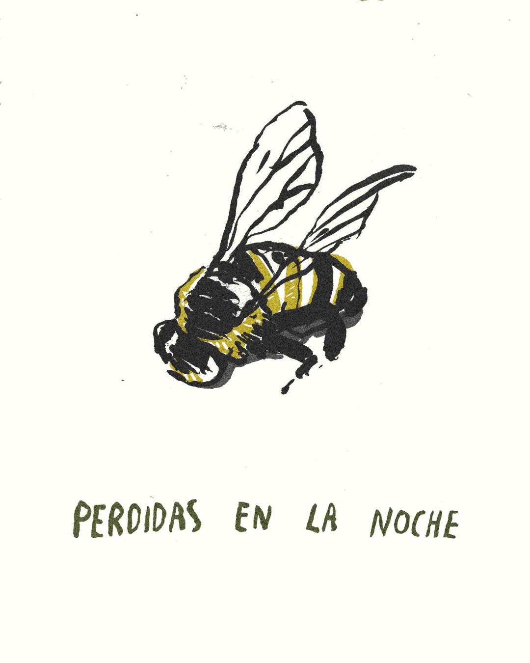para las abejas 2.jpg