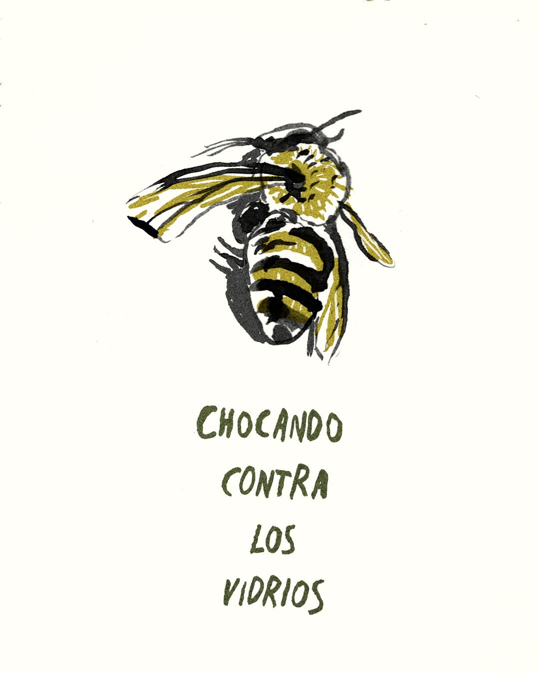 para las abejas 3.jpg
