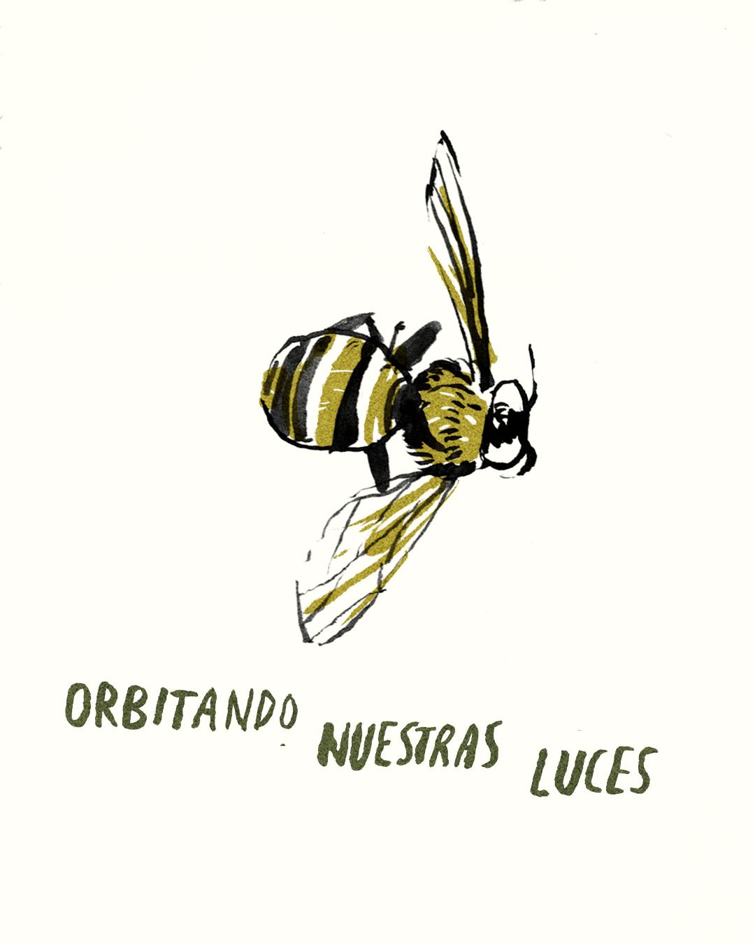 para las abejas 4.jpg